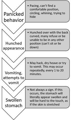 pug-dog-bloat-symptoms-chart-01