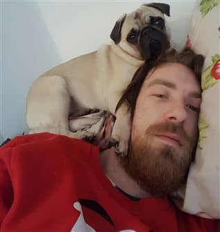 pug-on-owners-head