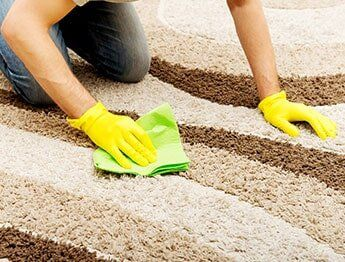Carpet Cleaning Using Cloth In Goshen