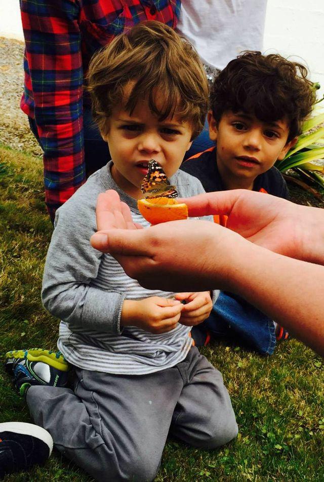 Outdoor Preschool, Marin CA