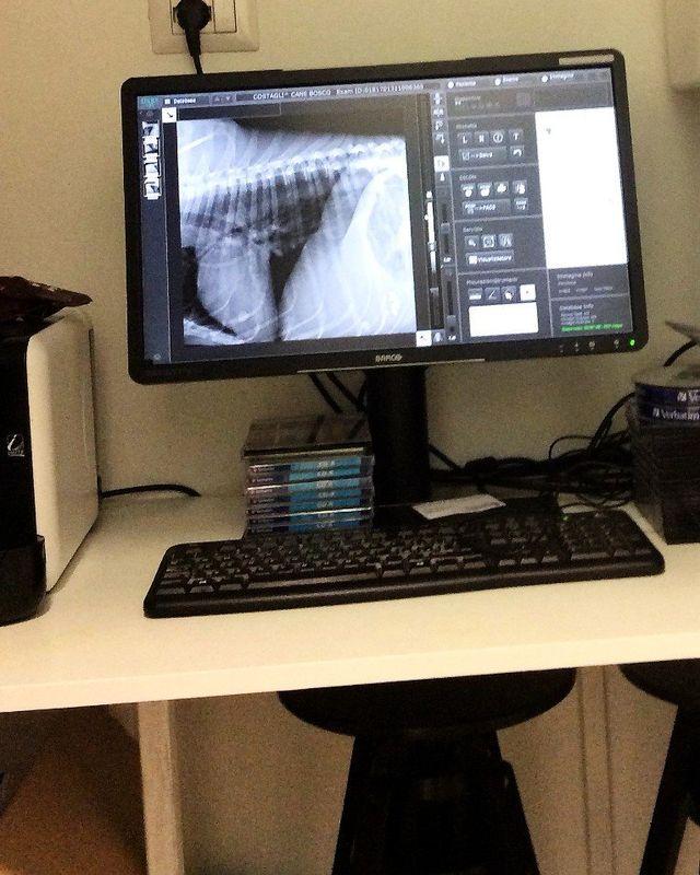 una scrivania con due monitor e un computer