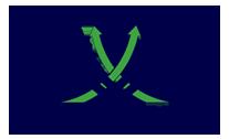 APICE SERVIZI - IMPRESA DI PULIZIE-Calcinato-Logo