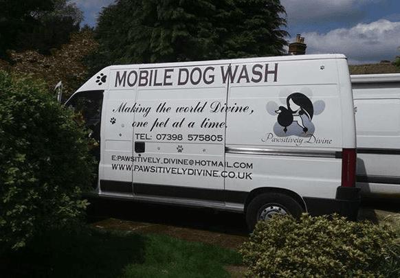 PawsitivelyDivine Banbury Dog Grooming