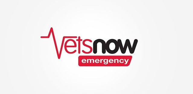 Emergency vets in Dalry and Kilmarnock