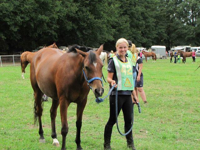 Veterinary Services Albury Amp Wodonga Hume Equine Centre