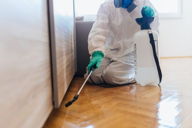 Depend On Us For Pest Control
