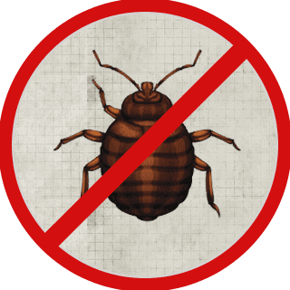Bed Bug Control Fayetteville Nc