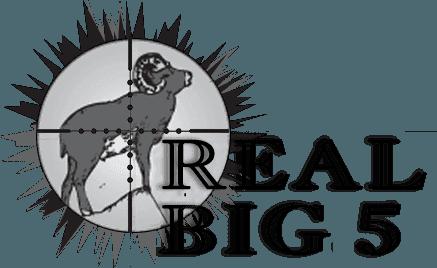 REAL BIG 5 logo