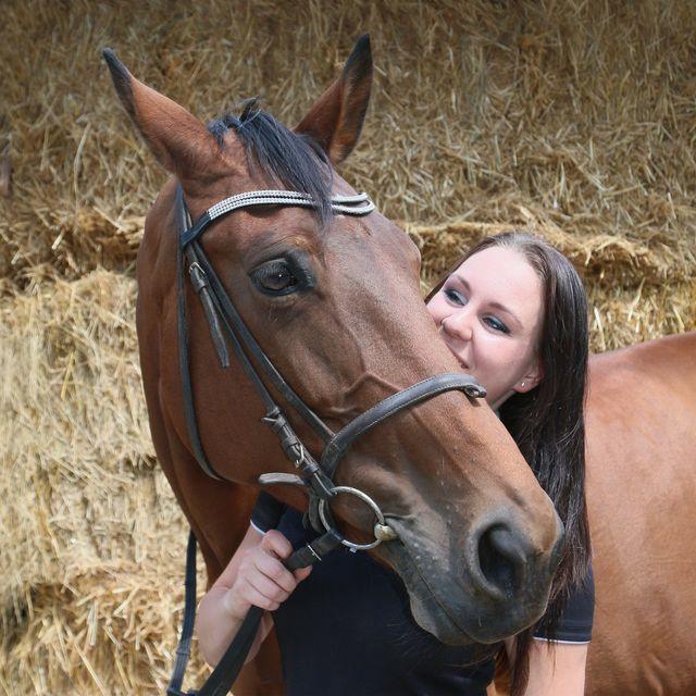 Je favoriete manege paard of pony leasen