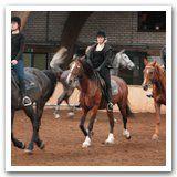 Paardrijlessen volwassenen