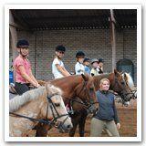 Ponylessen voor kinderen vanaf 7 jaar voor ponyrijden