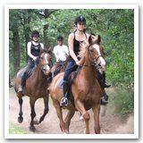Paardrijlessen jongeren vanaf 15 jaar