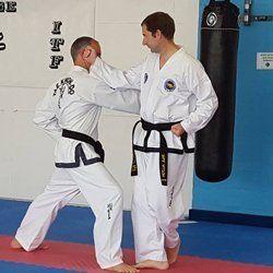 Private Taekwon-do session