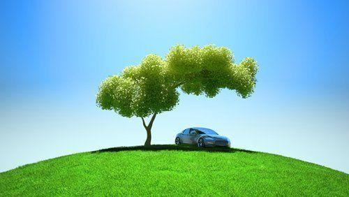 auto sotto un albero in cima a una collina