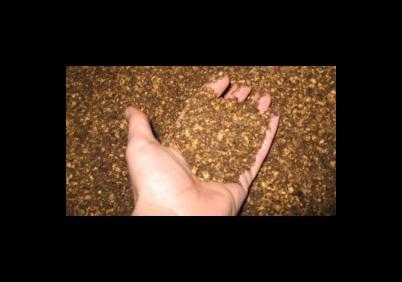 granelli nocciolo di oliva per riscaldamento