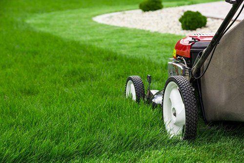 Lawn Service Florence, SC