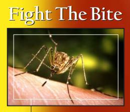 West Nile Virus: Fight the Bite Idaho Brochure
