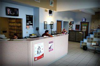 emergency animal hospital Cheektowaga, NY