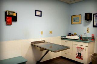 veterinary clinic West Seneca, NY