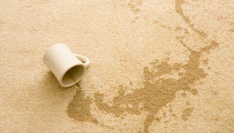 carpet stain removals