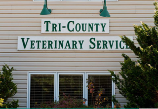 Veterinary Services Burlington, NC
