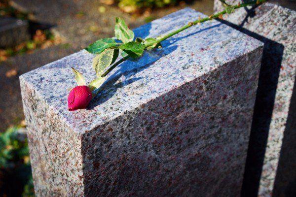 Una rosa rossa sulla lapide