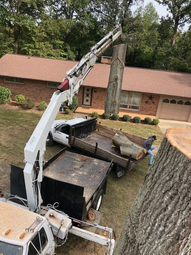 H & H Tree Service | Tree Service | New London, NC