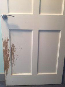 door with dog nails scratches