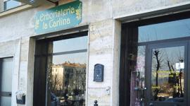 vista esterna del negozio ERBORISTERIA la CARLINA