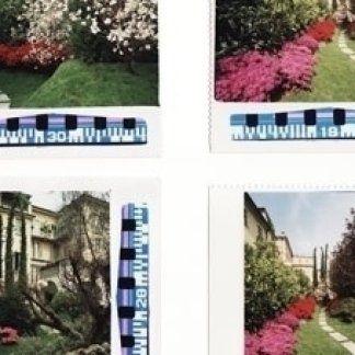 giardini con rose, giardini con alberi, giardini con aiuole