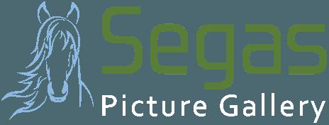 Segas logo