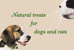 Natural treats for pets