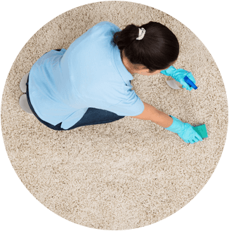 Residential Carpet Cleaning Wilson, NC
