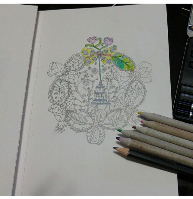 Inspired By Johanna Basfords Intricately Drawn Coloring Books For Adults Titled Secret Garden And Enchanted Forest Its Always Sold Out So I Decided To