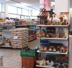 prodotti sanitari per cani, vendita animali domestici, alimenti per animali domestici