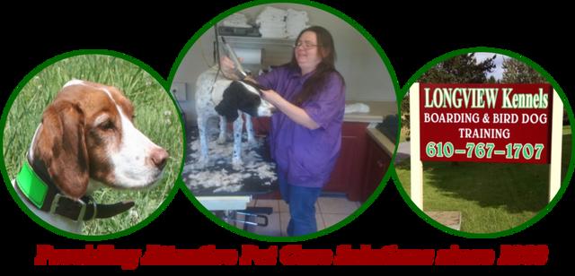 Dog Training, Dog Handler | Slatington, PA