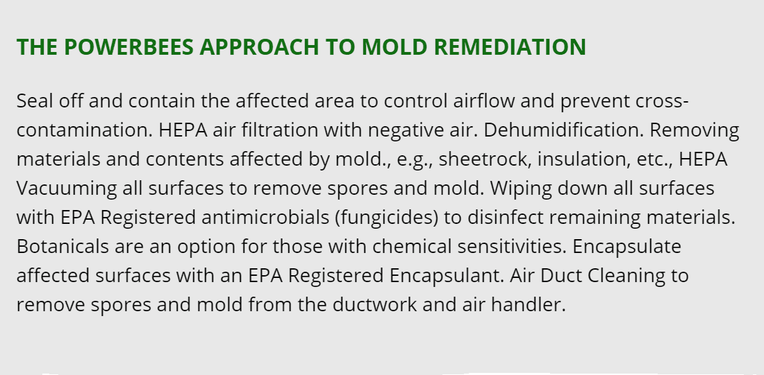 wobum mold removal