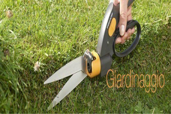 una mano con delle forbici da giardino