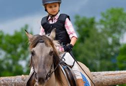 High quality equestrian equipment shop in Wimborne