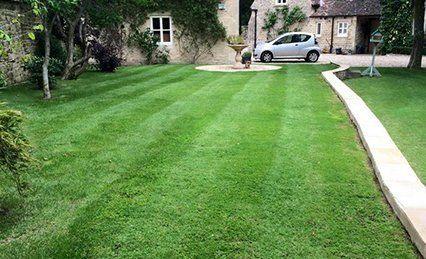 professional garden treatments
