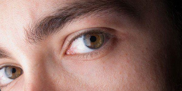 Primo piano di occhi marroni
