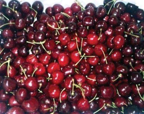 Fornitura di frutta e ciliegie a Arzachena, OT