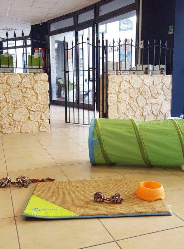 vista di un cancello nero semi aperto con dei muri in pietra color sabbia un tunnel giocattolo di color verde, un tappetino marrone con sopra una ciotola arancione e delle corde blu e rosse morsicate