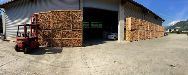 panoramica legna