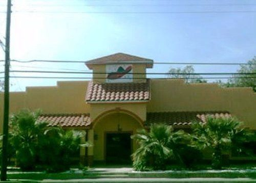 Chicken Wings San Antonio, TX