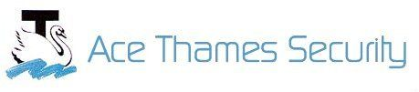 ace thames security logo