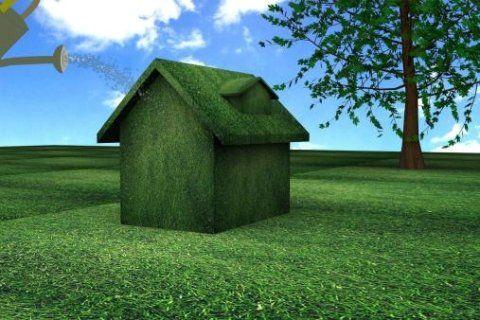 una struttura verde