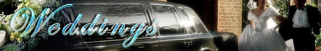 Wedding Party Bus Rental Chicago