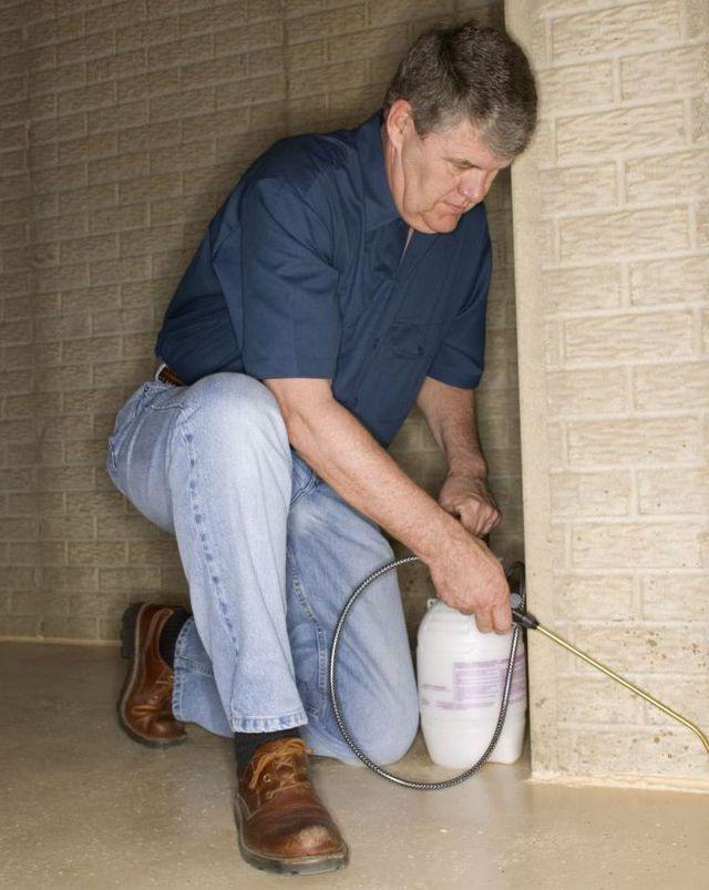 Pest solutions spraying in Harrison, AR