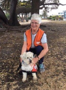 Morning Peninsula VIC, Australia | Story Dogs